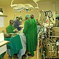 Shisong Cardiac Centre: Head of State Confers Special Status