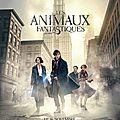 Les <b>Animaux</b> <b>Fantastiques</b>, de David Yates