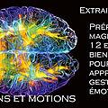 Le terrain <b>neurophysiologique</b> dans lequel puisent les émotions