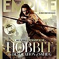 The Hobbit Desolation of Smaug Empire Cover 02