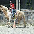 Jeux équestres manchots 2013 (269)