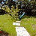 Banc aspiré avec la pelouse par les tréfonds de la terre