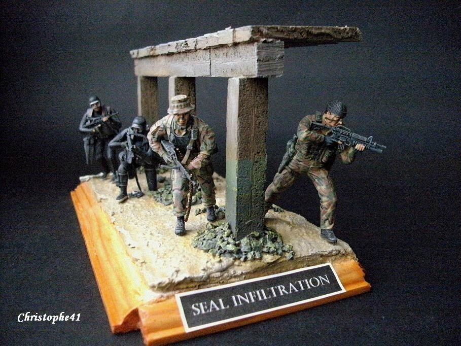 SEAL Infiltration PICT9575