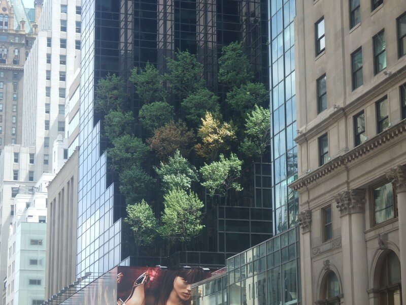 A New-York, tout est, même la Nature