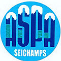 Association Sportive PLEIN AIR SEICHAMPS ASPA