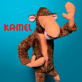 Mon cadeau prefere n°7 : kamel