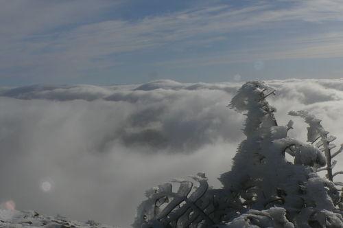 2008 11 20 Photo prise au Mont Mézenc (43)
