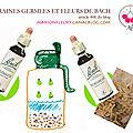 Graines germées et Fleurs de Bach / Alimentation et élixirs floraux