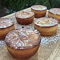 Muffins à la pomme verte râpée