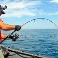 pêche aux thons rouge (44)