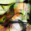 03A. Le corbeau et le renard