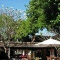 Chiang Mai - Tamarind Village