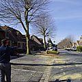 2000 - 06.04.2018 Abattage arbres rue lamartine