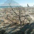 Le sable de cayo largo