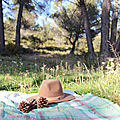 Into the wild...au pied de la sainte victoire
