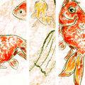 Des petits poissons dans l'eau...