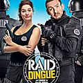 Raid dingue, de <b>Dany</b> <b>Boon</b> (2017)