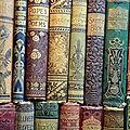 La bibliothèque de Northanger