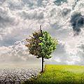 Ενδεικτικο προγραμμα ημεριδας «κλιματικές αλλαγές και γεωμυθολογικά μονοπάτια στην εκπαίδευση για την αειφόρο ανάπτυξη»