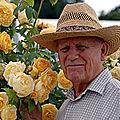 Rosiériste David Austin