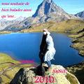 SuperGrippe A vous souhaite une bonne année 2010