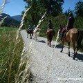 Aout 06 Alpes 10
