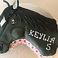 Le cheval Mistral :