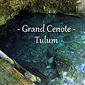 Nager dans la grand cenote à tulum - mexique