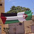 الجزائر: شريان الأمل التاريخي للقضية الفلسطينية, منى عوض