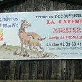 ETE 2007 LES CHEVRES DE MONSIEUR MARTIN