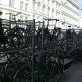 Quelques vélos (Copenhague)
