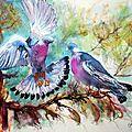 Palombes ,aquarelle sur papier canson 300g 50x60