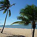 <b>Cairns</b>/Trinity Beach et une autre expérience d'Helpers
