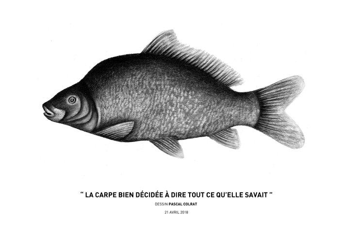 __la_carpe_bien_de_cide_e_a__dire_tout_ce_qu_elle_savait__