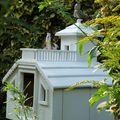 Oiseaux de mon jardin #1