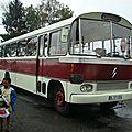 DSC08028 (Large)