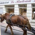 cheval tirant la cariole