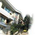 Raviolis maison