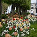Fête des jardins à alfortville : dimanche 28 septembre