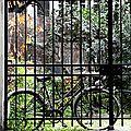 Vélo_8450