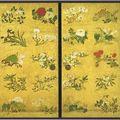 02-Kotohira-gu, Hanamaruzu (fleurs), détail, 4 panneaux fusuma (4x(177,5cm x 91cm), Itô Jakuchû, 1764