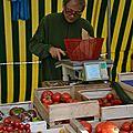 divers variétés de tomates
