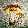 champignon1