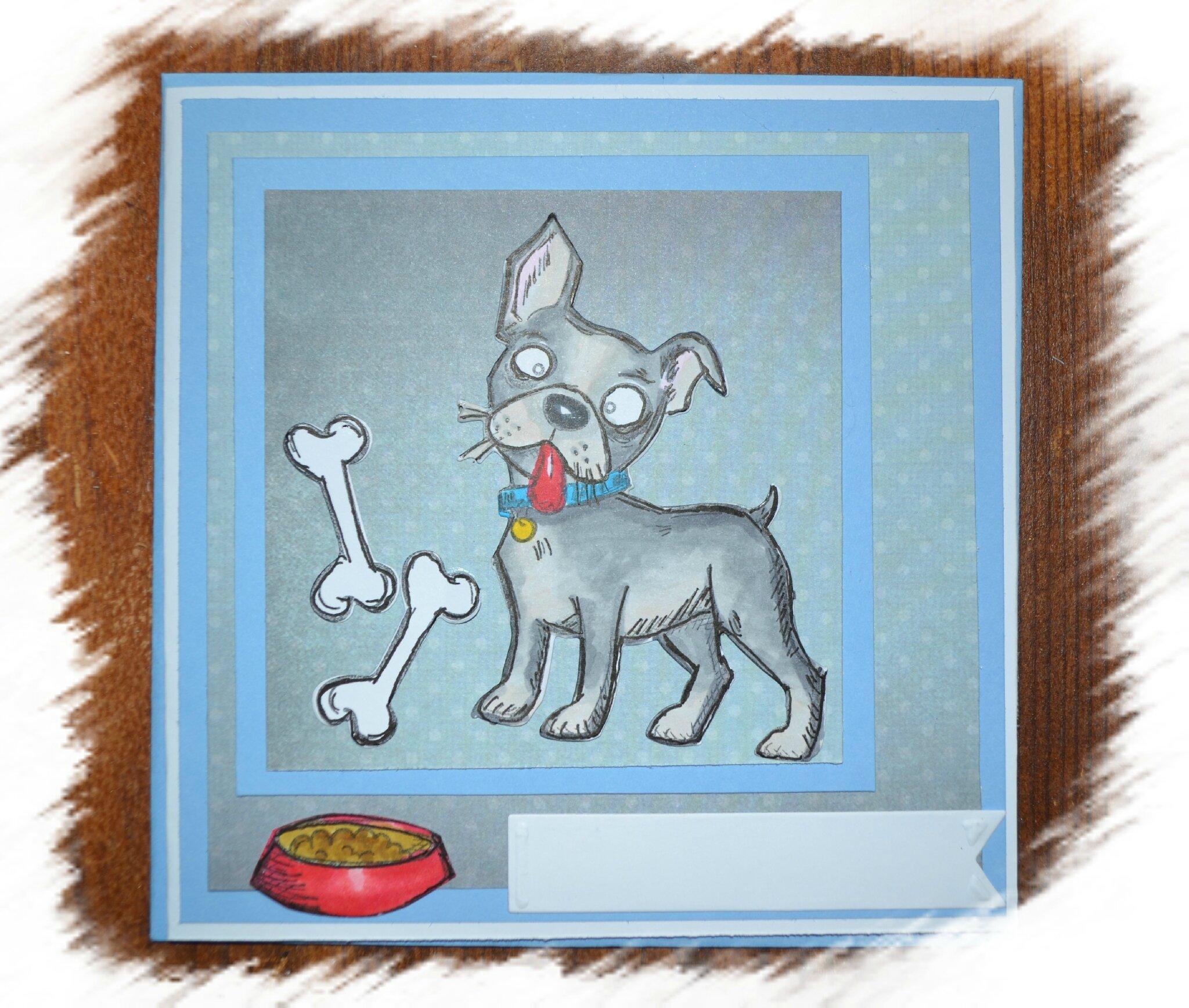 carte crazy dog
