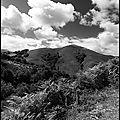 Cloudmakers trio & jass - ajmilive vol 7, ajmilive vol. 10