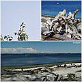 Vashon Island Park Robinson Park Beach