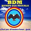 Kongo dieto 1538 : les langues bantu et la politique