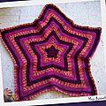 2011-11-14 Plaid étoile