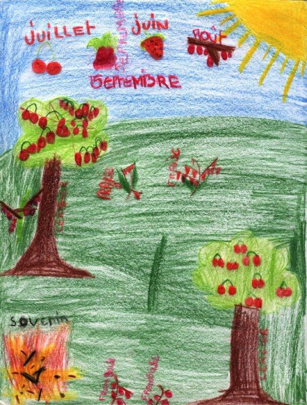 La saison des fruits rouges vu par Alexandre