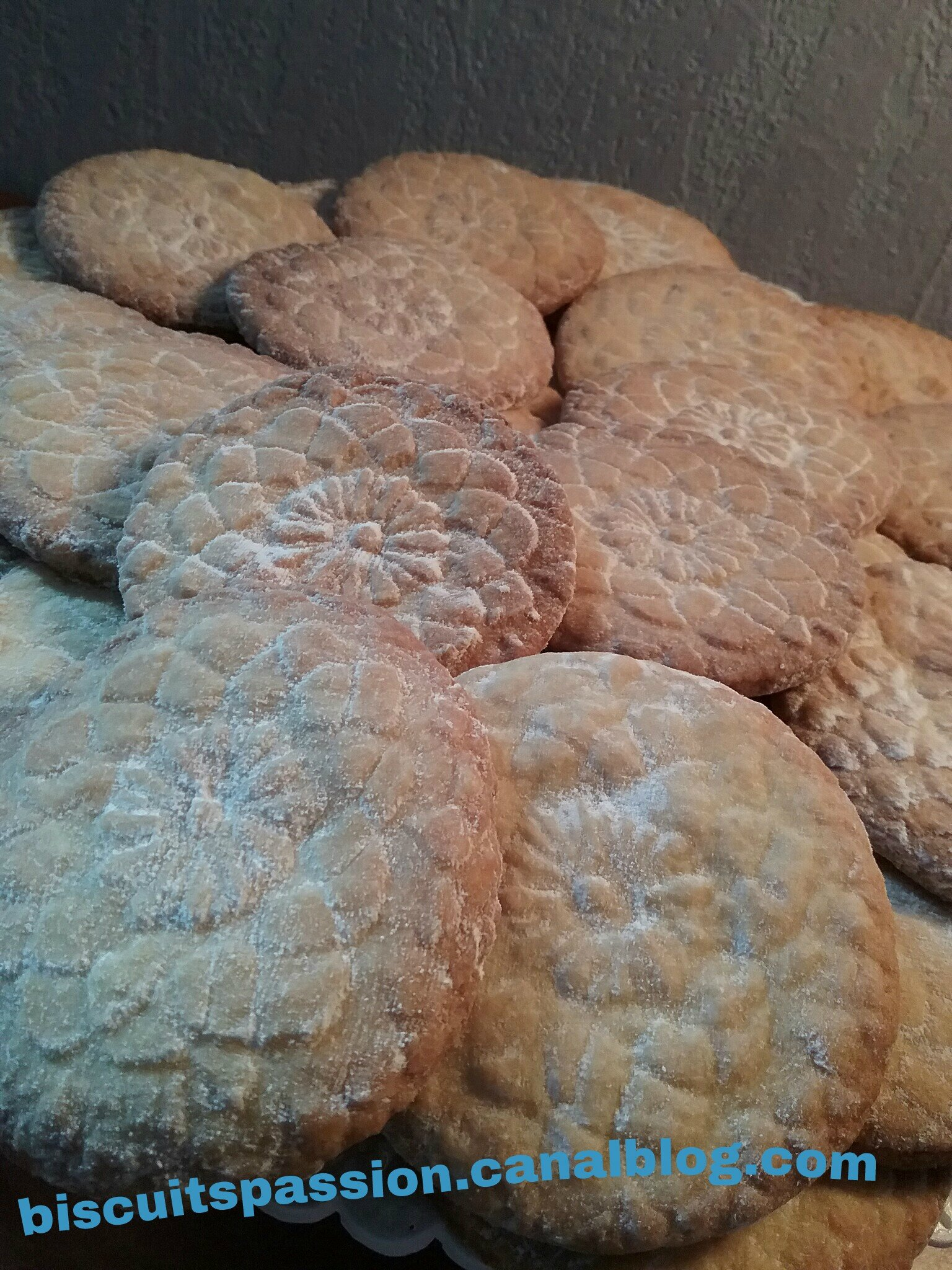 BISCUITS NAPPERON 058